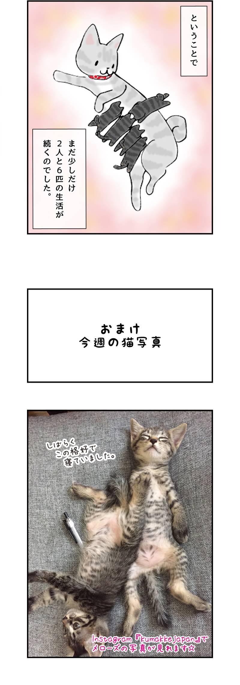 くまコミ 第25話